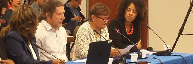 Inter-American Commission on Human Rights to Hear Right to Water Testimony